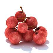 Fruit_07 3d model