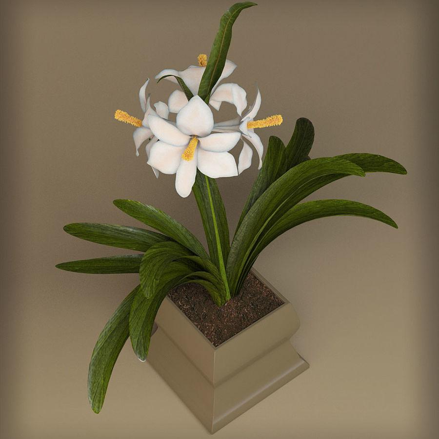pot de fleur royalty-free 3d model - Preview no. 3
