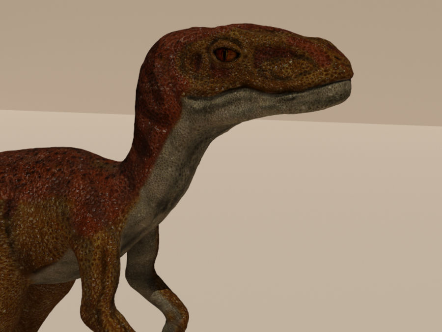 velociraptor royalty-free 3d model - Preview no. 2