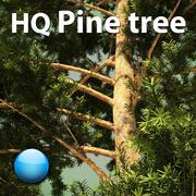 HQ Pine tree 3d model 3d model