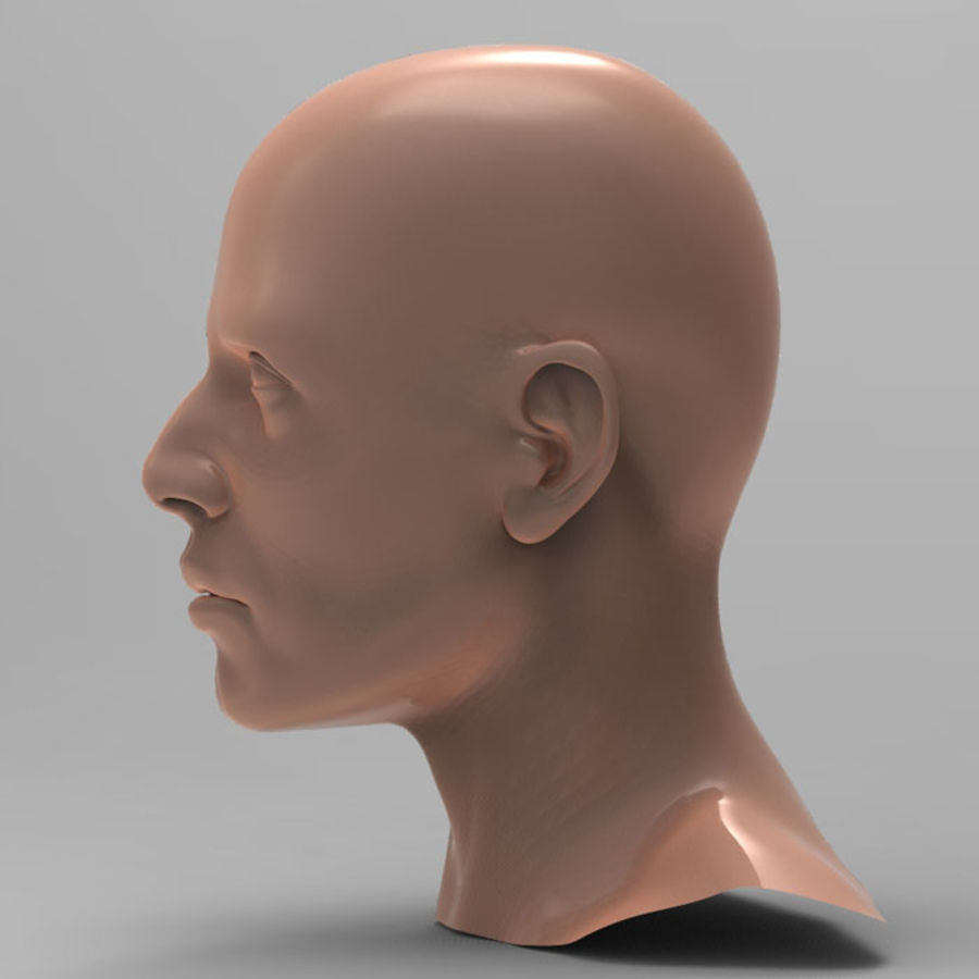 Tête d'homme royalty-free 3d model - Preview no. 4