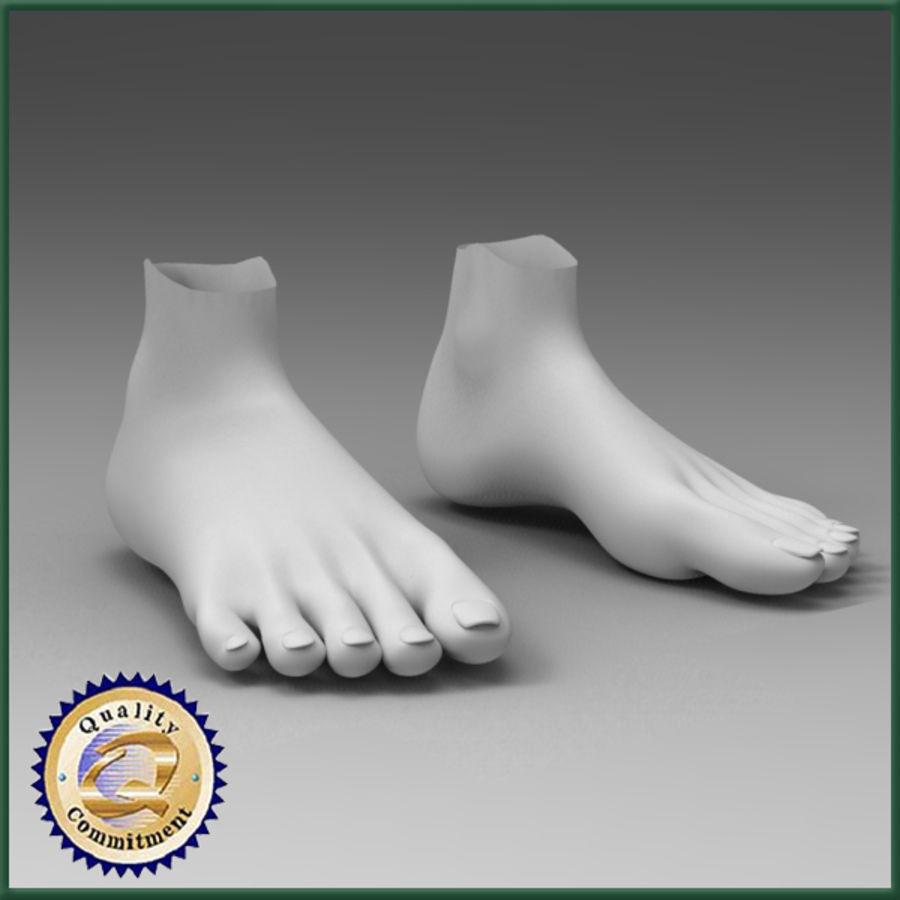 female feet 3d model $10 - .obj .max .ma .fbx - free3d