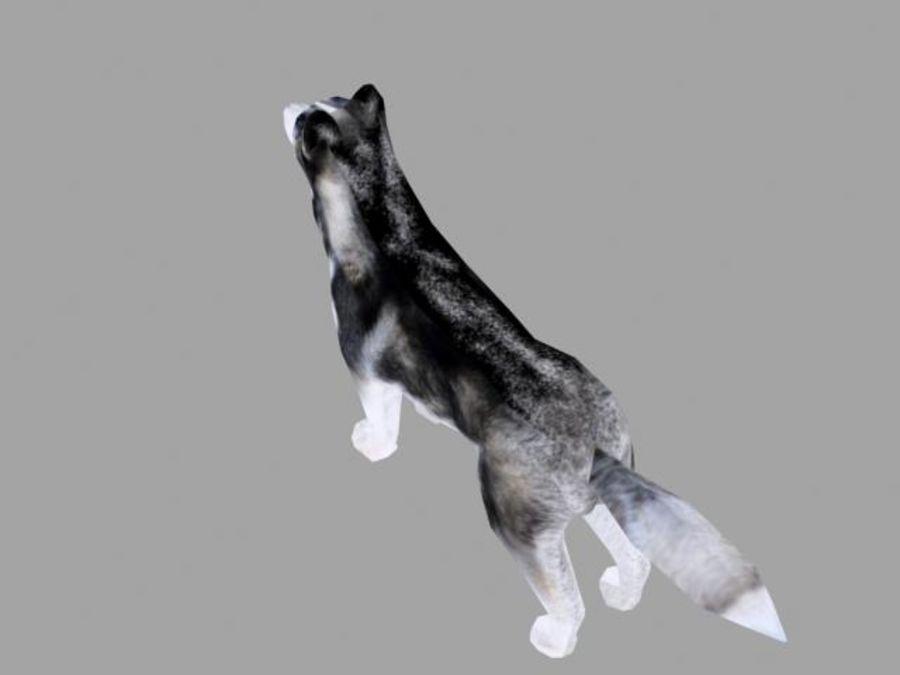 Dog husky 3D Model $5 - .max - Free3D