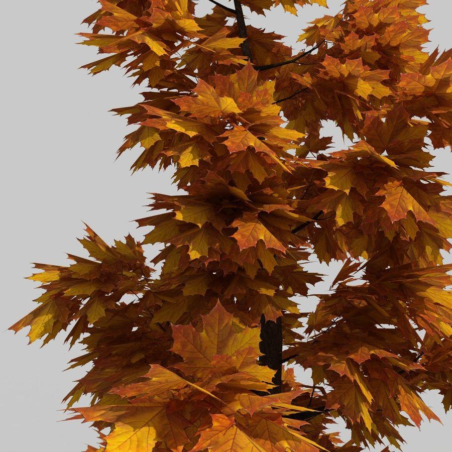 Árvore 3 royalty-free 3d model - Preview no. 4
