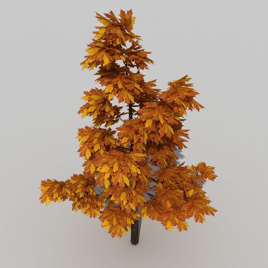 Árvore 3 royalty-free 3d model - Preview no. 5