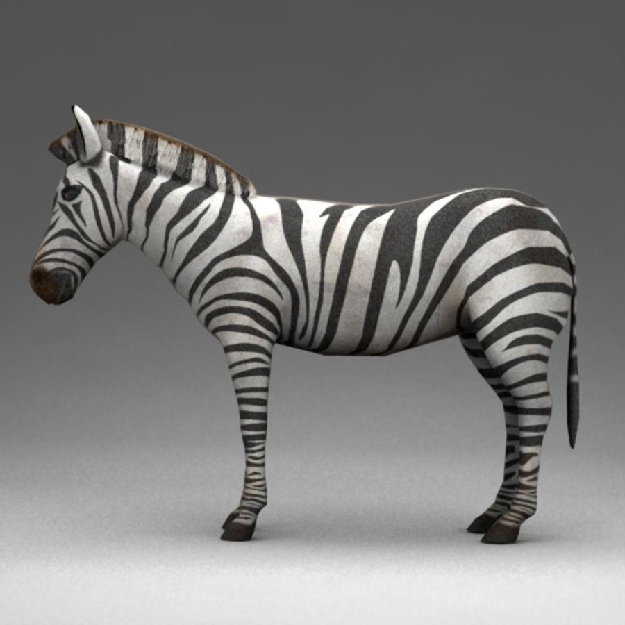 Zebra royalty-free 3d model - Preview no. 4