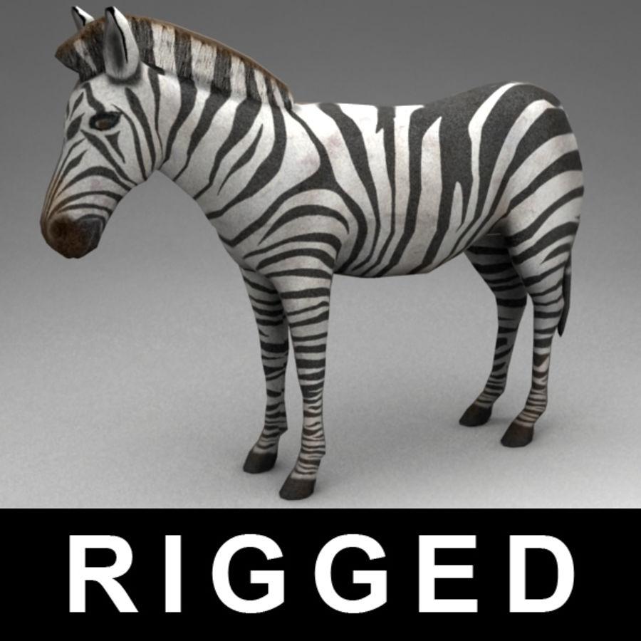 Zebra royalty-free 3d model - Preview no. 1