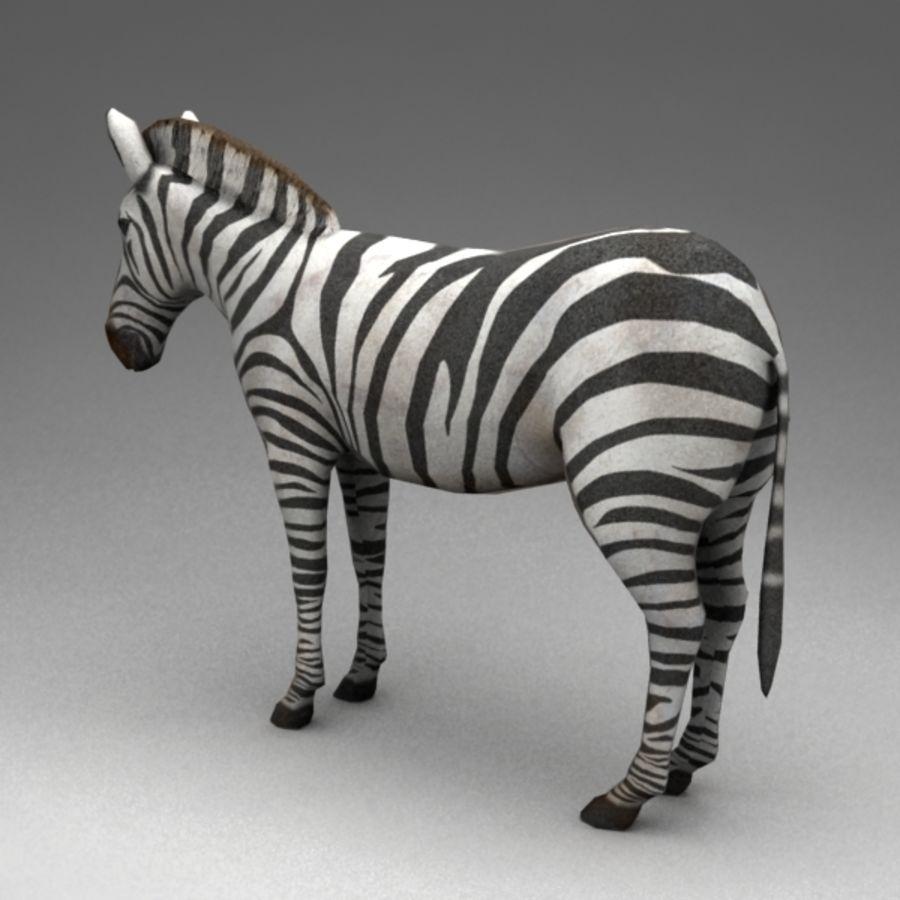 Zebra royalty-free 3d model - Preview no. 3