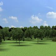 Environment_landscape_forest_01 3d model