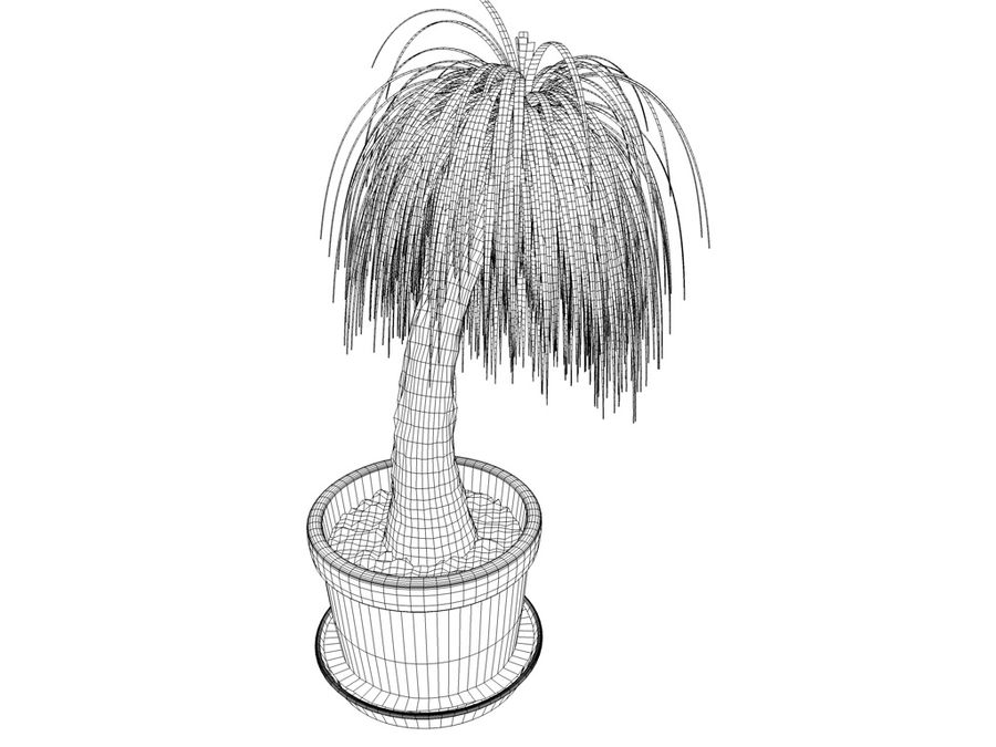 Palm Tree Plant Pot royalty-free 3d model - Preview no. 6