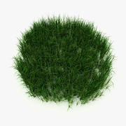 Herbe à faible teneur en poly 3d model