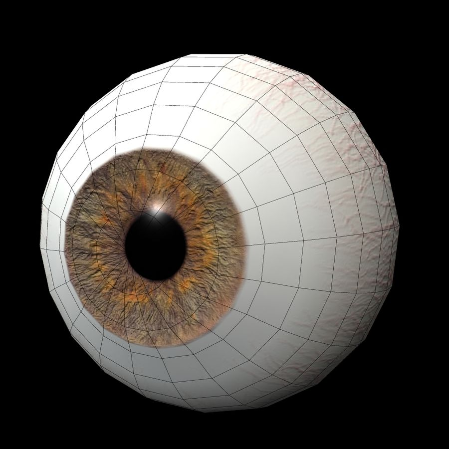 eye royalty-free 3d model - Preview no. 3