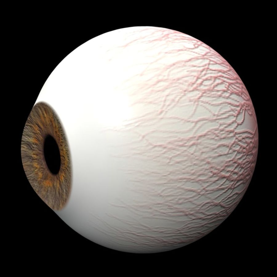 eye royalty-free 3d model - Preview no. 2