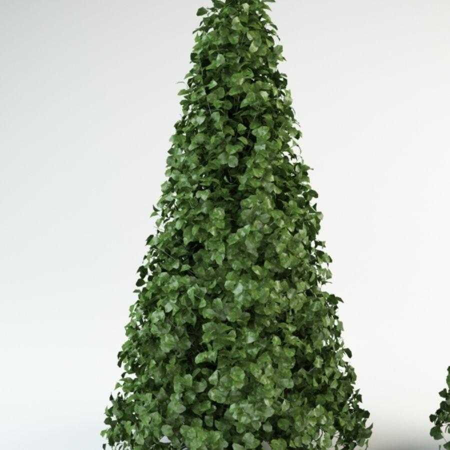 bush shrub royalty-free 3d model - Preview no. 3