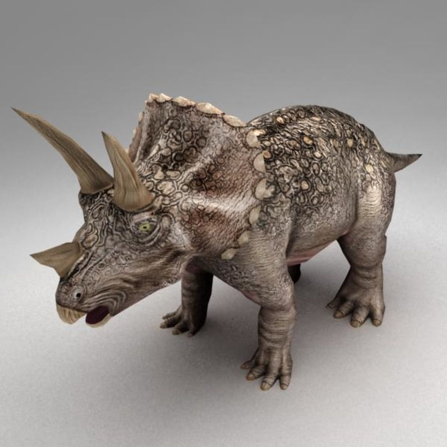 Triceratops animated royalty-free 3d model - Preview no. 1