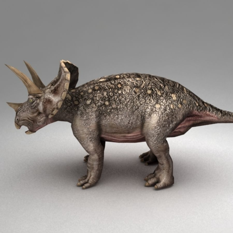 Triceratops animated royalty-free 3d model - Preview no. 3