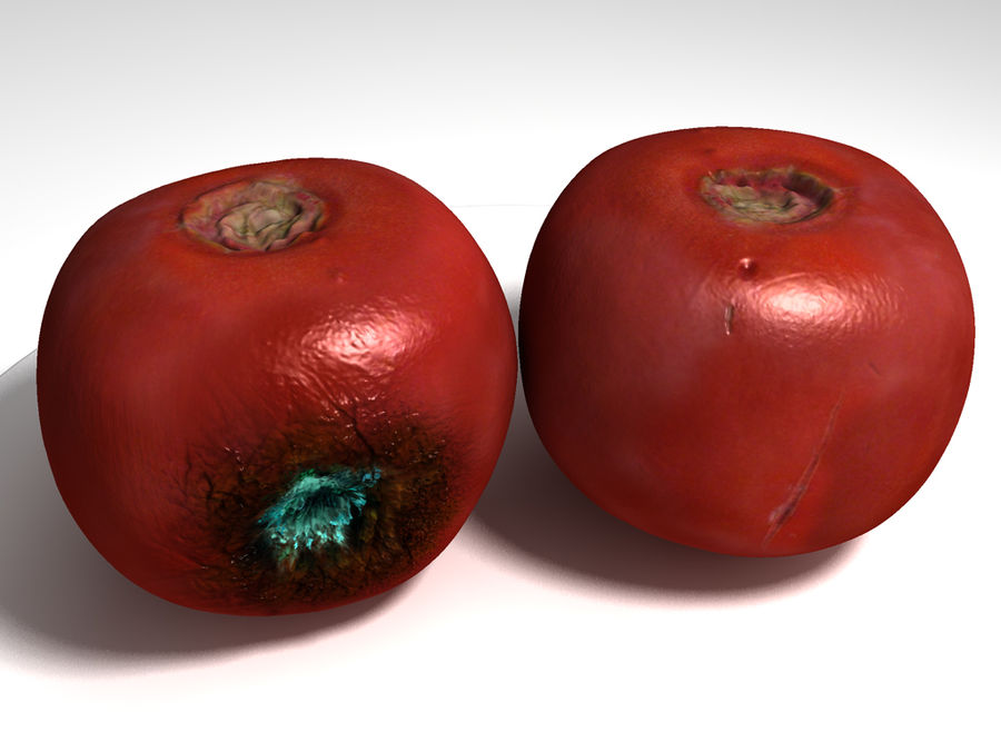 Rotte rotte tomaat royalty-free 3d model - Preview no. 1