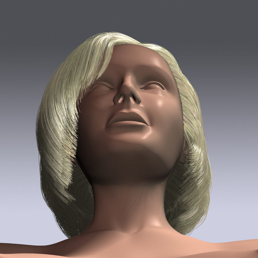 Virtual Hair 6 royalty-free 3d model - Preview no. 10
