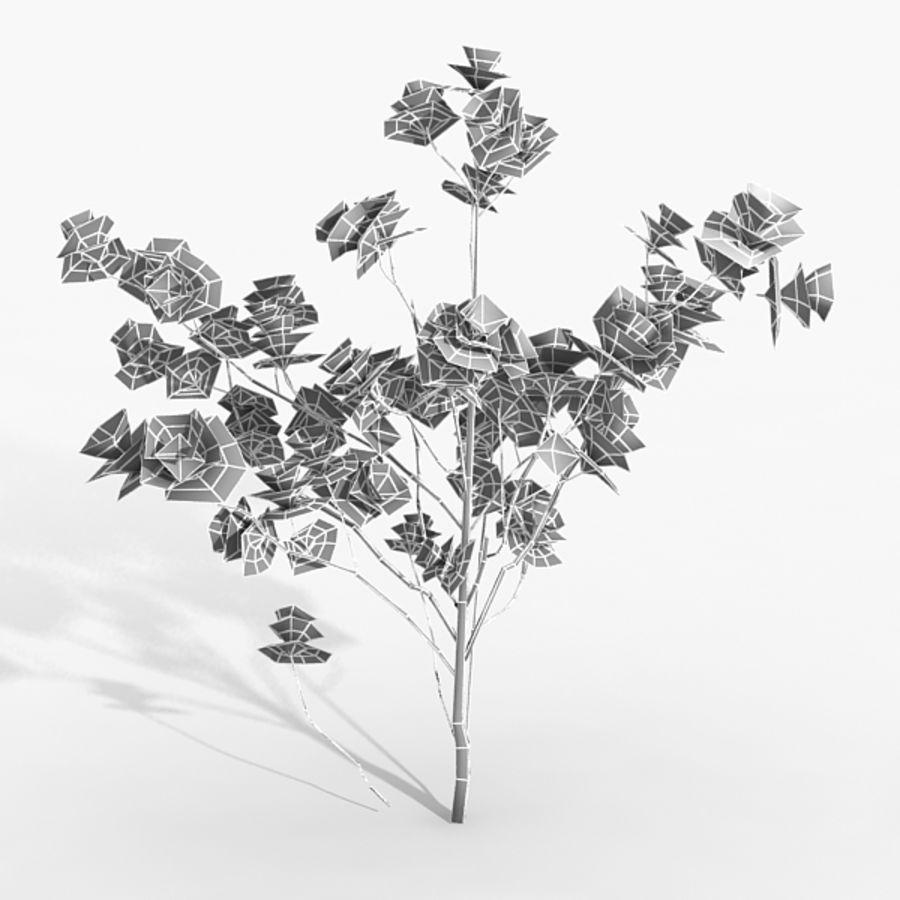 Växt Magnolia royalty-free 3d model - Preview no. 4