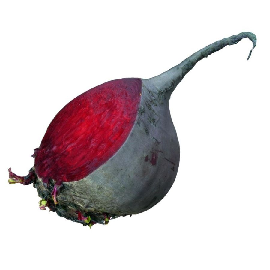 red beet royalty-free 3d model - Preview no. 1
