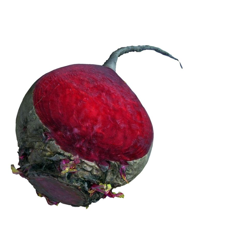 red beet royalty-free 3d model - Preview no. 6
