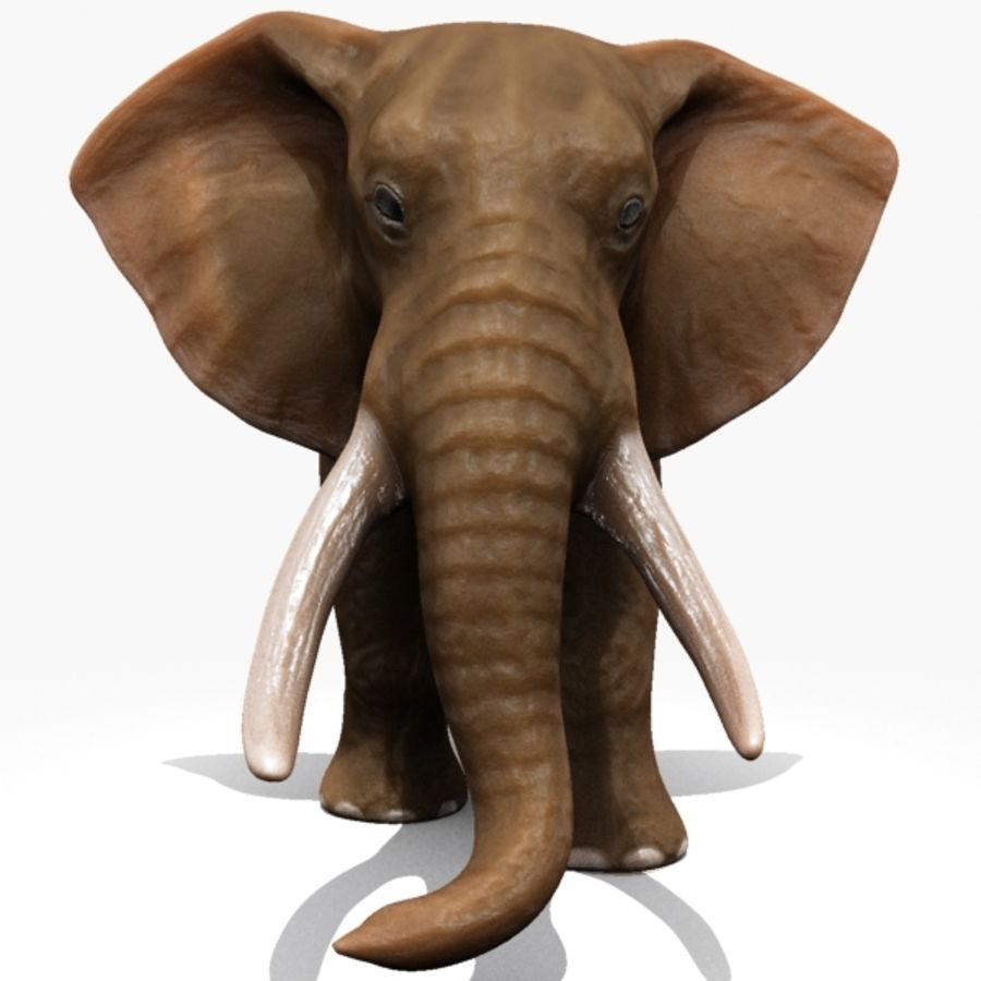 Elephant royalty-free 3d model - Preview no. 3