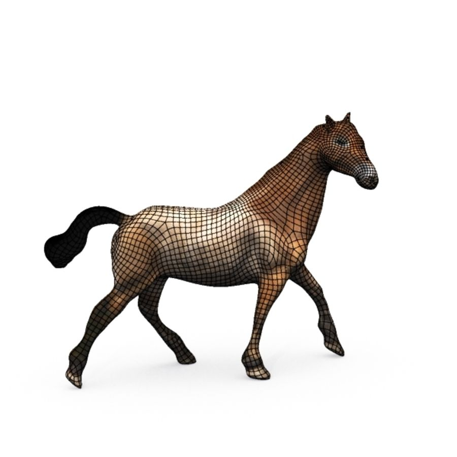 Horse royalty-free 3d model - Preview no. 8