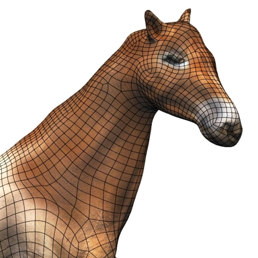 Horse royalty-free 3d model - Preview no. 9