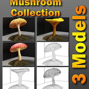 Mushroom Collection 3d model