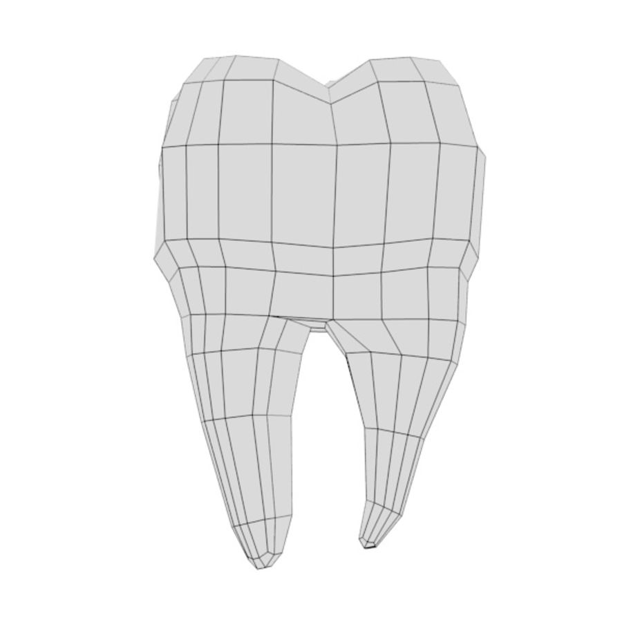 td7-second molar royalty-free 3d model - Preview no. 4
