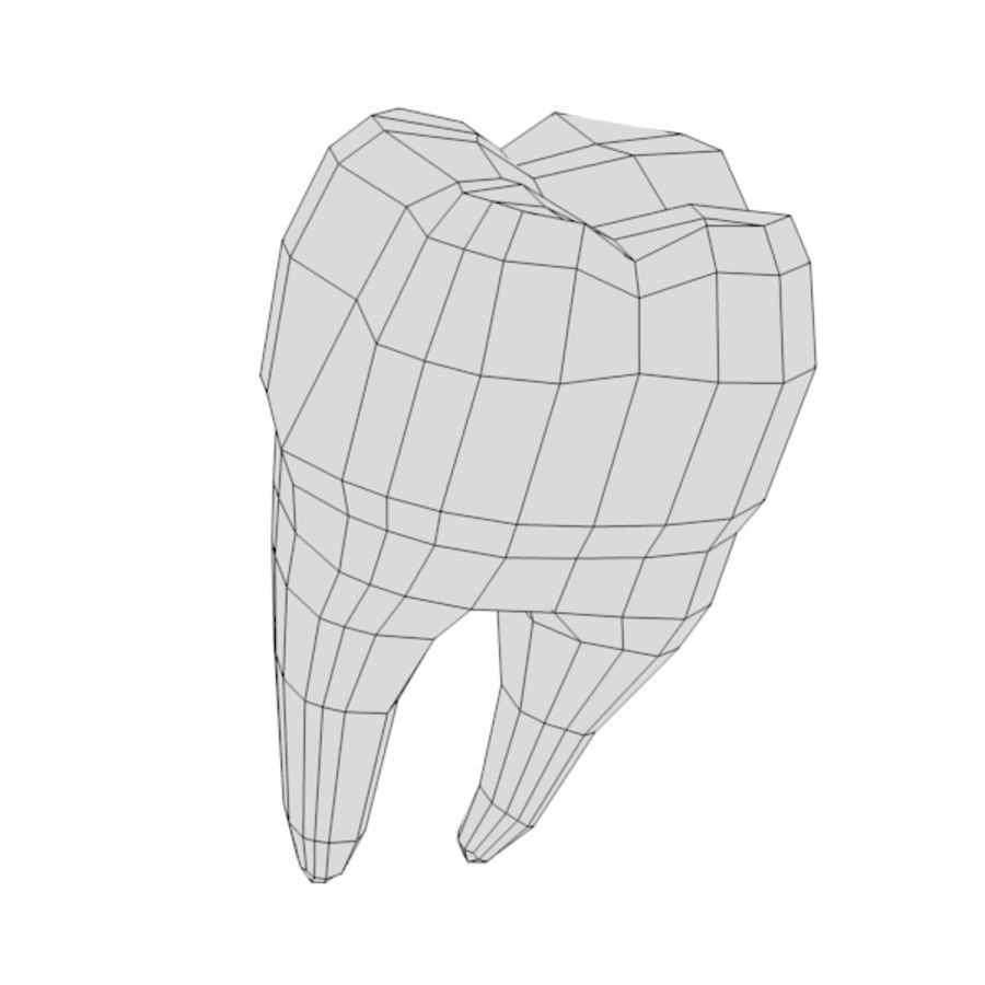 td7-second molar royalty-free 3d model - Preview no. 5