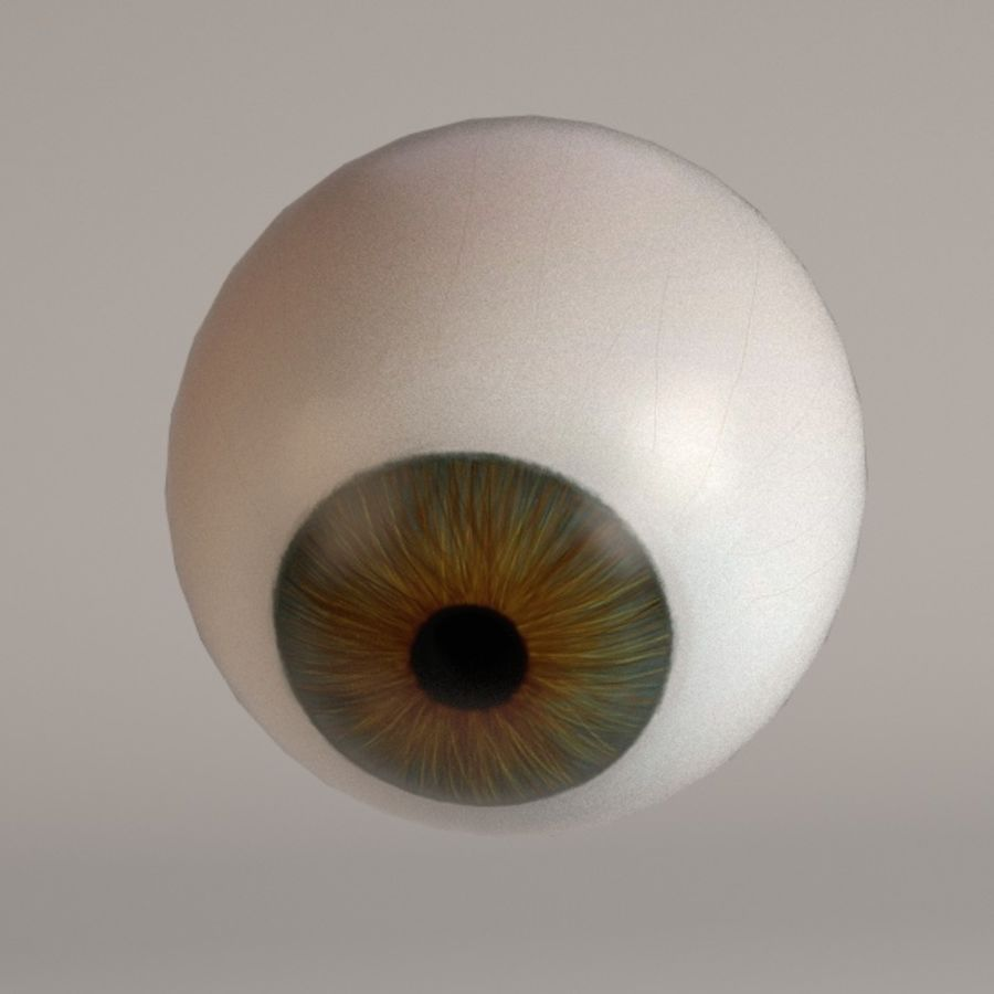 eyes royalty-free 3d model - Preview no. 4