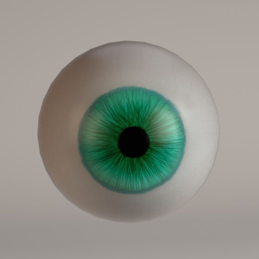 eyes royalty-free 3d model - Preview no. 11