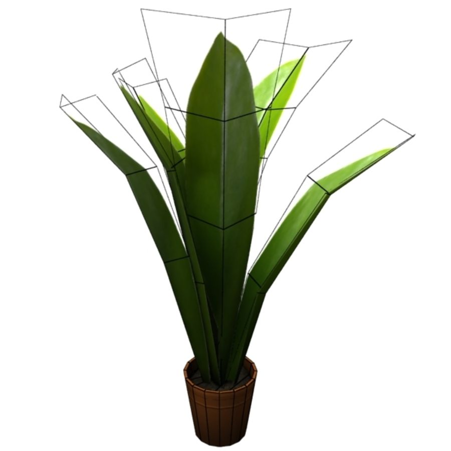 plant royalty-free 3d model - Preview no. 6