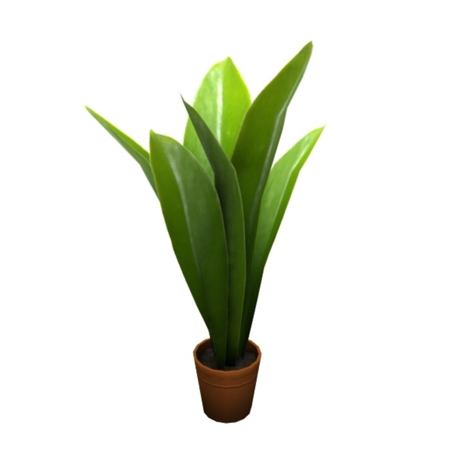 plant royalty-free 3d model - Preview no. 1