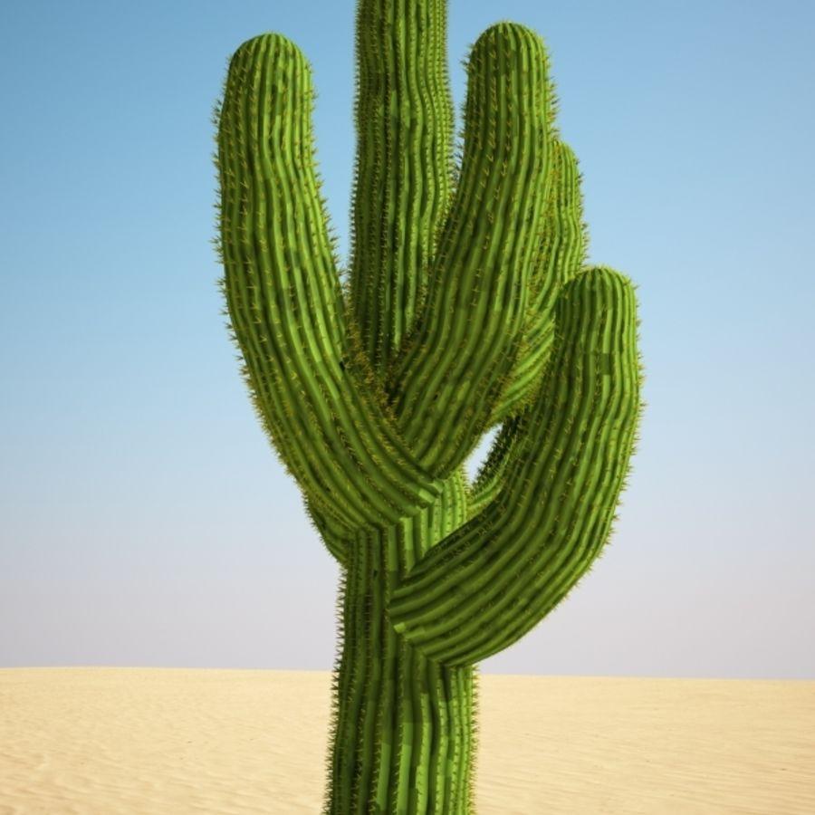 cactus Saguaro royalty-free 3d model - Preview no. 4