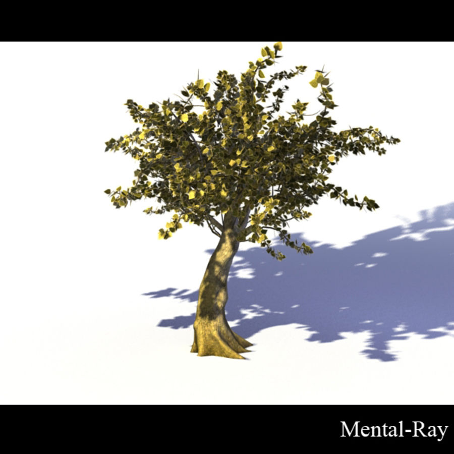 Tree royalty-free 3d model - Preview no. 6