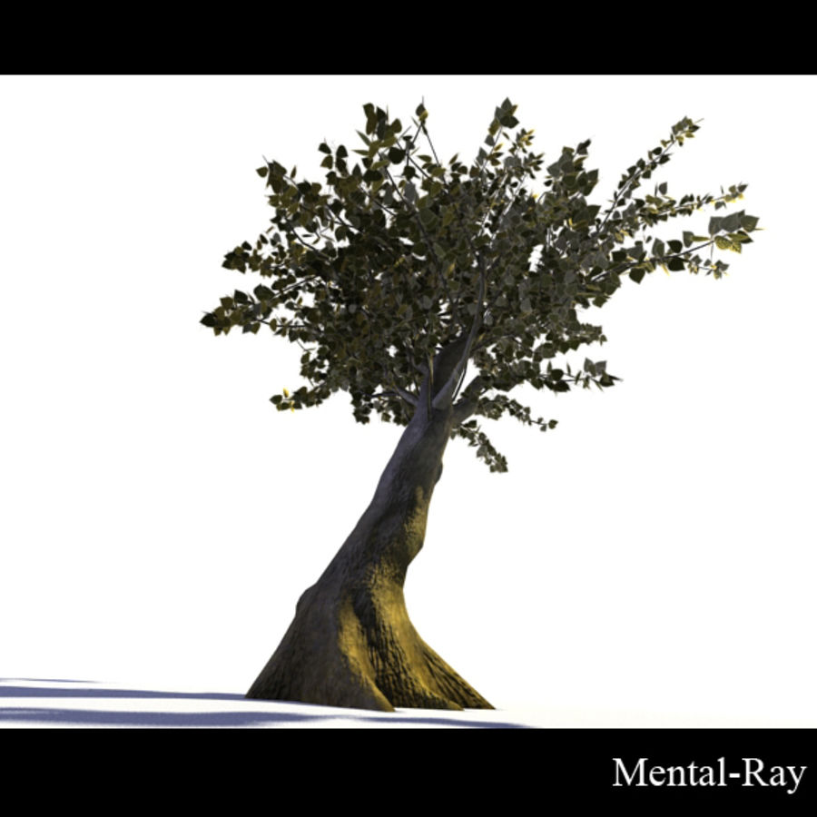 Tree royalty-free 3d model - Preview no. 9