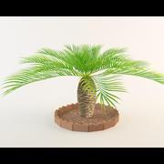 Palm tree 2.0 3d model