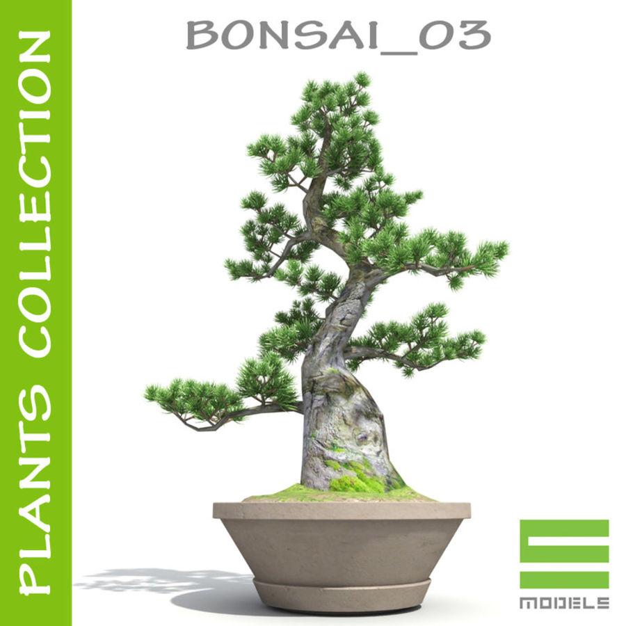 Tree - Bonsai_03 royalty-free 3d model - Preview no. 1