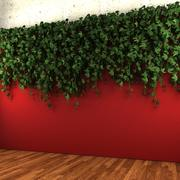 Muur opknoping plant - A 3d model