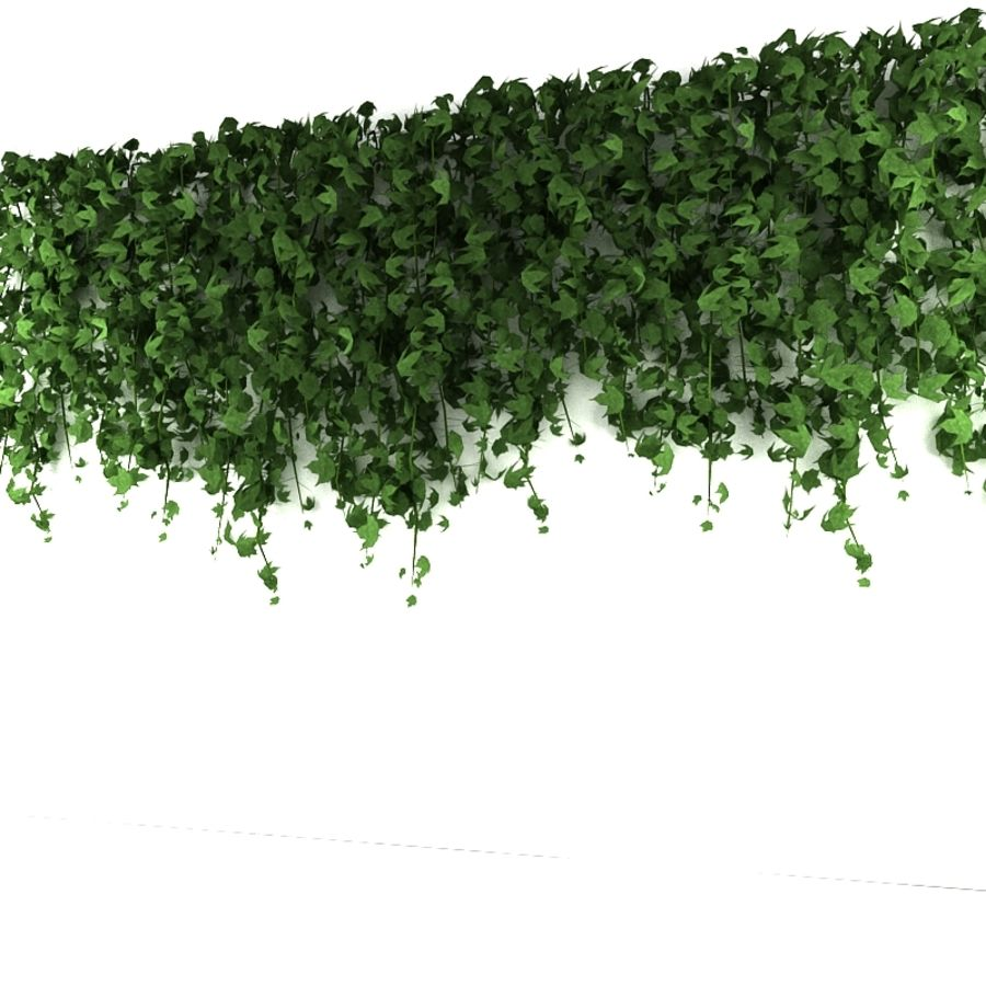 Wall hanging plant - A royalty-free 3d model - Preview no. 3
