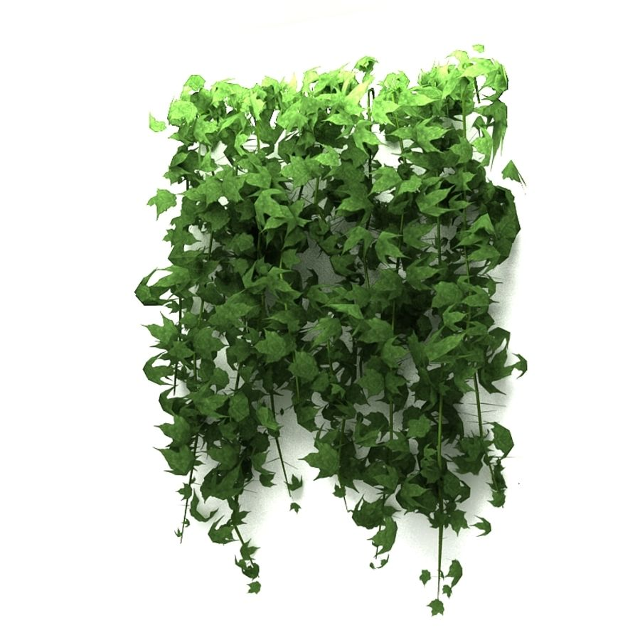 Wall hanging plant - A royalty-free 3d model - Preview no. 4