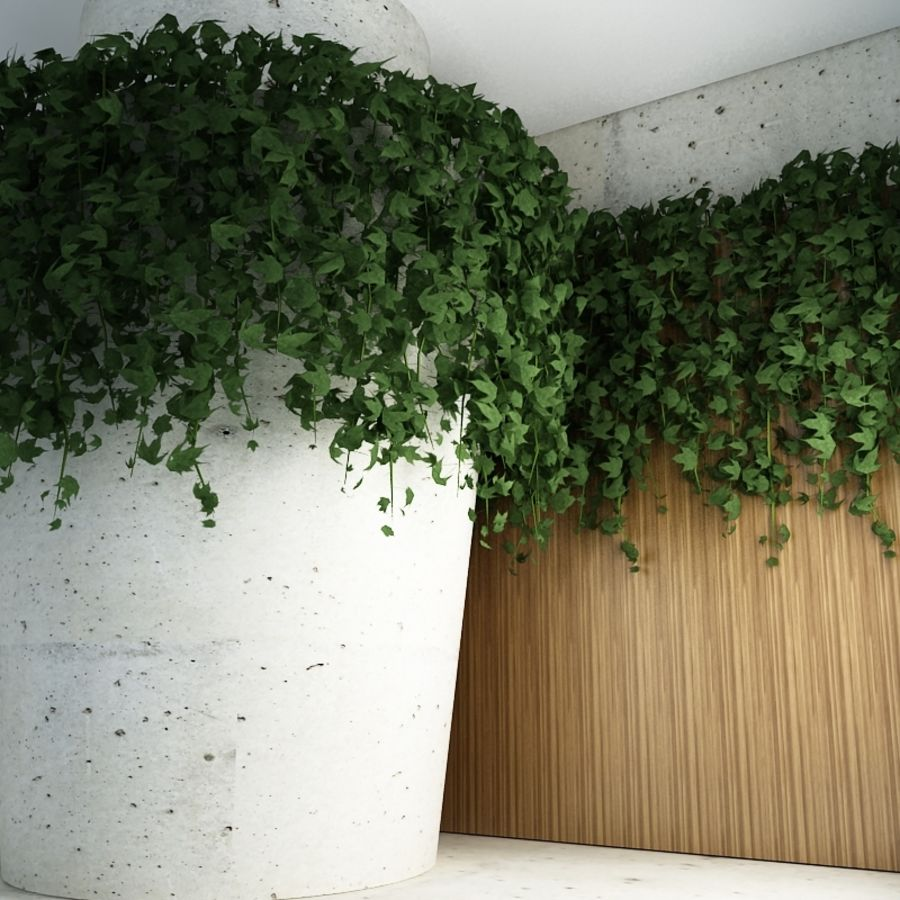 Wall hanging plant - A royalty-free 3d model - Preview no. 2