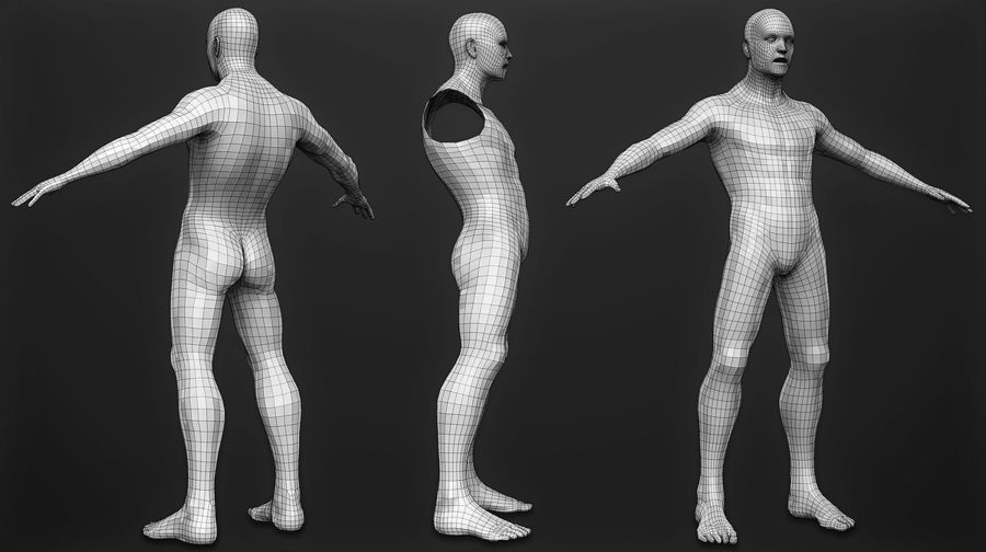 Male Base Mesh royalty-free 3d model - Preview no. 2