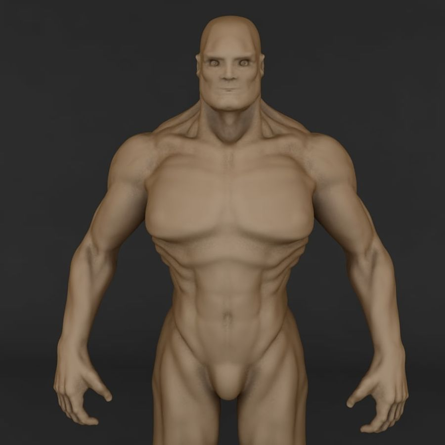 corpo humano royalty-free 3d model - Preview no. 2