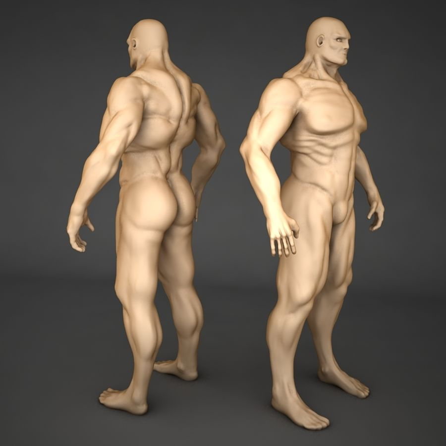 corpo humano royalty-free 3d model - Preview no. 1