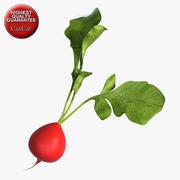 Vegetable 2 Radish 3d model