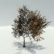 Autumn_Tree_Bundle_B 3d model