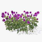 Cowslip Flower Bush 3d model